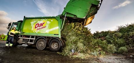 Duizenden kerstbomen uit de regio transformeren van licht in de duisternis naar compost