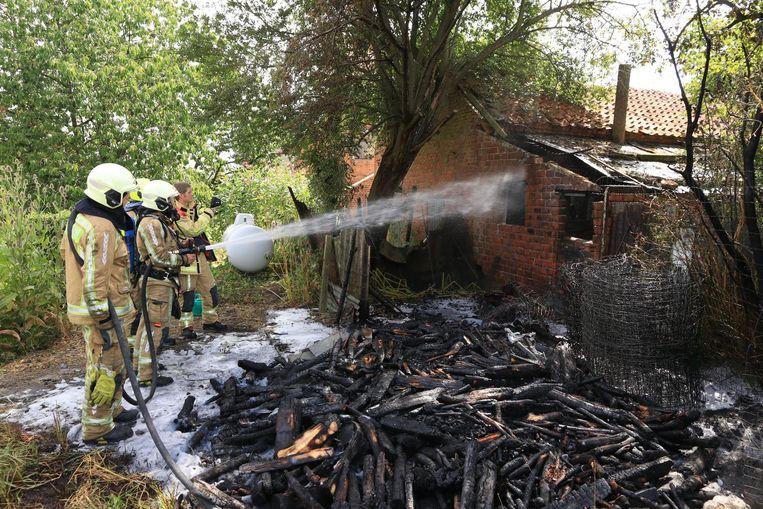 Een grote houtstapel, enkele bomen en een schuurtje gingen in vlammen op maar een gastank (links in beeld) kon gevrijwaard worden.