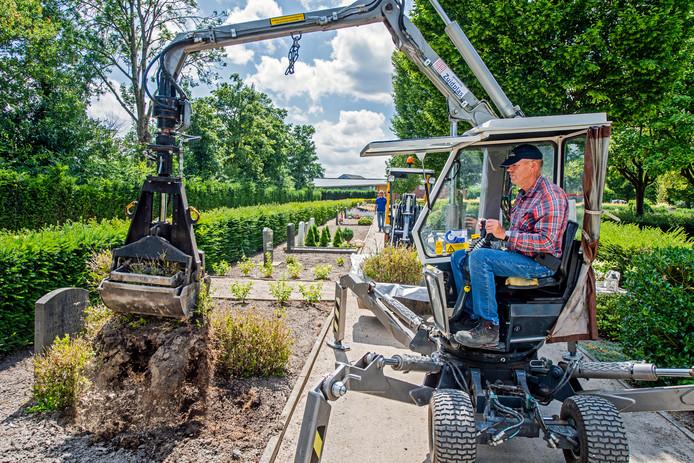 Op de begraafplaats in Zevenhuizen is een medewerker bezig met het verwijderen van dode buxusplanten.