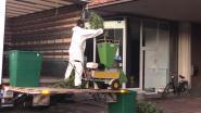 Cannabisplantage met duizend planten ontmanteld in Antwerpsestraat