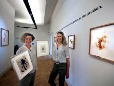 Expositie 'Gestolde beweging' in Gorcums Museum: 'Soms kun je het resultaat met één laag verpesten'