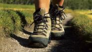 Schelle organiseert wandelzoektocht