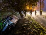 Bestelbus belandt in sloot bij ongeluk in Made: bestuurder gewond
