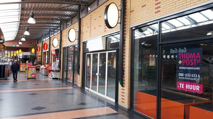 Sommige winkels in winkelcentrum Groot Driene staan al meer dan een jaar leeg.