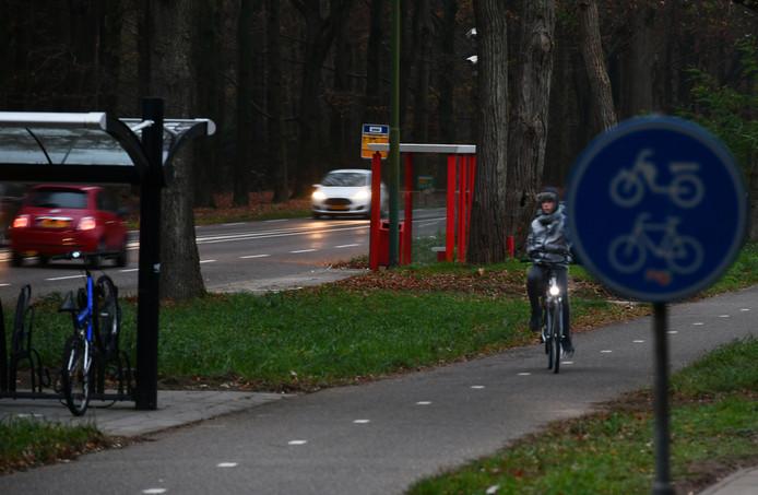Het bushokje langs de provincialeweg nabij het AZC in Leersum, waar veel overlast is.