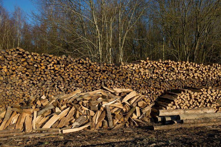 De gemeente verkoopt hout.