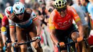 """Waarom Belgische renners zo moeilijk winnen: """"Toppers genoeg, maar té weinig winnaars"""""""