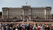 Man met stroomstootwapen opgepakt aan Buckingham Palace