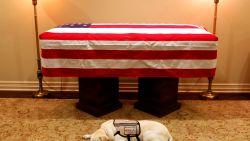 """Ook honden rouwen bij overlijden van hun baasje: """"Snuffelen aan de dode helpt om afscheid te nemen"""""""