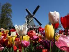Bloemenpark Keukenhof is bomvol: 'Kom niet meer, ook niet tijdens de paasdagen'