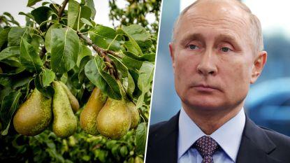 """Belgische fruitbedrijven omzeilen voedselsancties Poetin: """"Perensmokkel levert 240 miljoen euro op"""""""