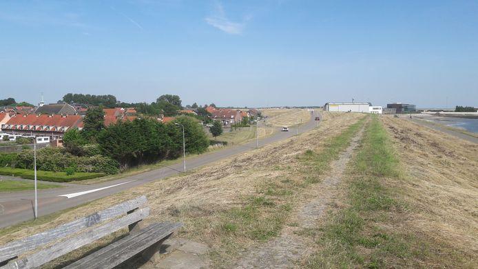 Dijk bij Hansweert