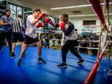 Schilder, advocaat, arts of stukadoor: iedereen bokst