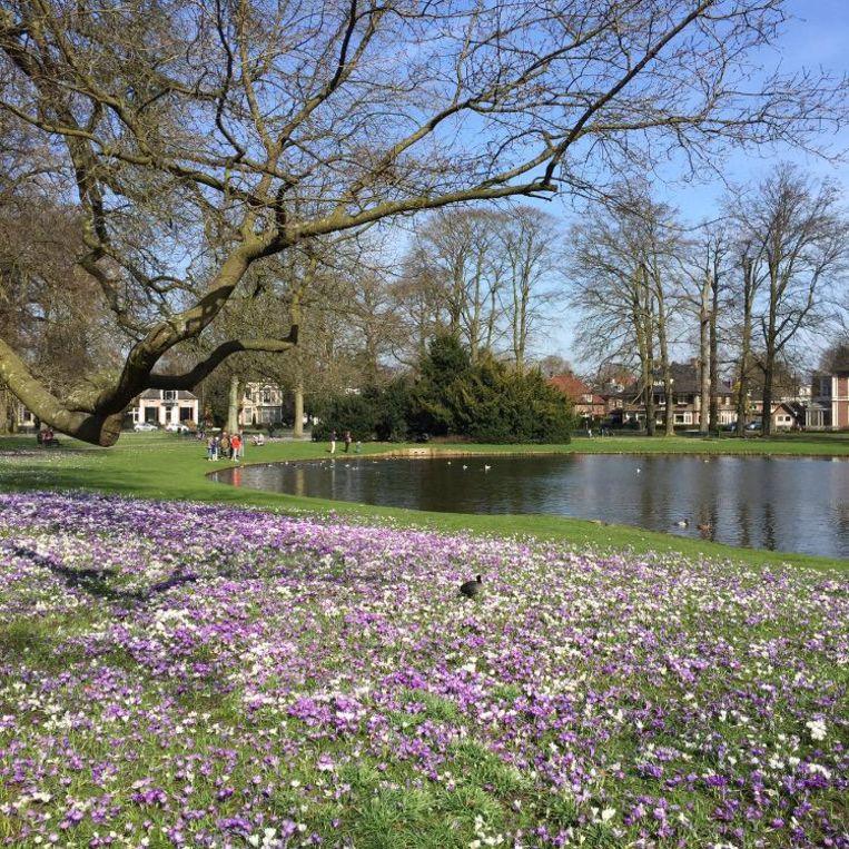 Het Oranjepark, een betere wijk in Apeldoorn. Beeld