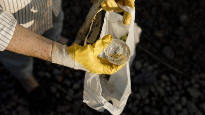 Stad Antwerpen doet extra inspanningen voor World Cleanup Day