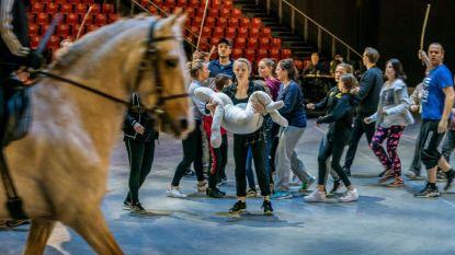Spectaculaire repetities voor 'Daens 2.0', met echte paarden
