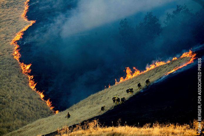 Brandweerlieden bestrijden een bosbrand in de buurt van Brentwood in Californië in de Verenigde Staten. Branden braken uit op 3 augustus en duurden tot 7 augustus. Ook nu kampt de Amerikaanse staat met enorme bosbranden. Foto Noah Berger (VS).