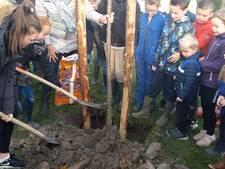 Dorpsboomgaard Cadzand geopend: 'Het wordt hier hartstikke tof'