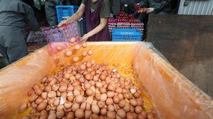 Nederlandse pluimveesector in hoger beroep in fipronilzaak