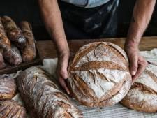 Zuurdesembrood bakken is hipper dan ooit: met deze tips kun je zelf aan de slag