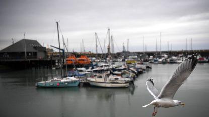 """Ramsgate niet klaar voor ferryverbinding met Oostende na harde brexit"""