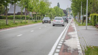 """N367 Brugsesteenweg wordt verder vernieuwd: """"Bredere fietspaden gescheiden van de weg"""""""