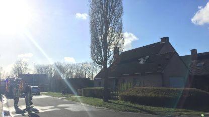 Hond overleden bij woningbrand in Zulte