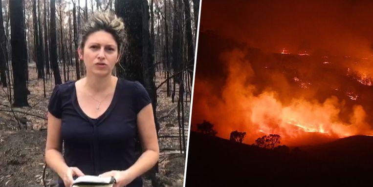 Onze reporter Inge Bosschaerts brengt in Australië verslag uit.