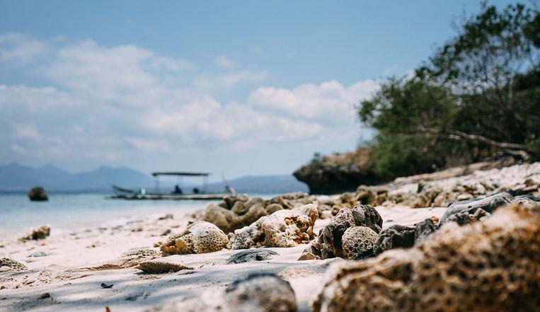 Menjangan Island.