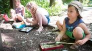 Tekenacademie stuurt leerlingen het bos in