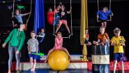 """Circusscholen en -kampen blijven aan populariteit winnen: """"We willen niet langer circus zien, maar wel zelf beleven"""""""
