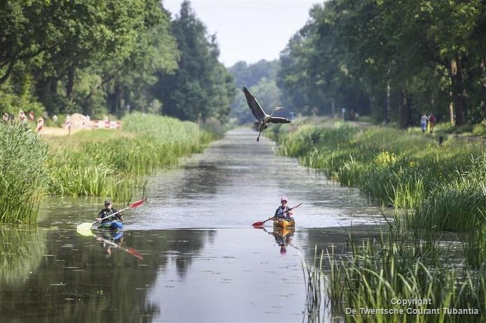 Twee kanoërs genieten van de natuur en van de reiger bij de Euregio kanorally op het kanaal tussen Nordhorn en Almelo