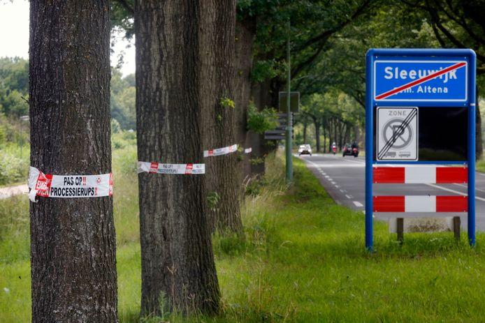 Waarschuwingen voor de eikenprocessierups in Sleeuwijk.