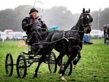 Tachtigste Fokpaardendag in Lierop afgelast vanwege coronacrisis