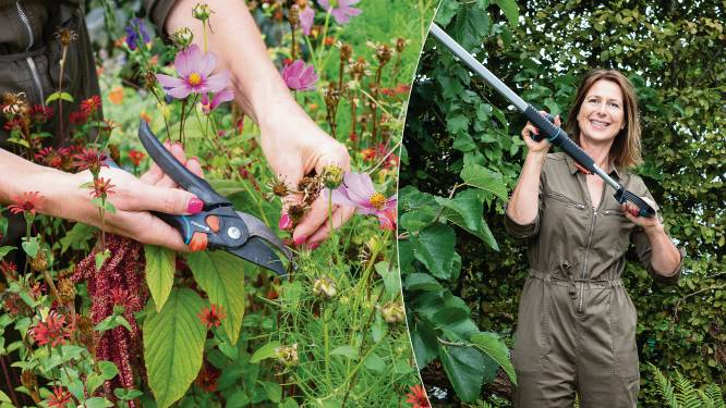 Snoeien in de tuin? Onze tuinexperte legt uit welke schaar je het best gebruikt voor elke snoeiklus
