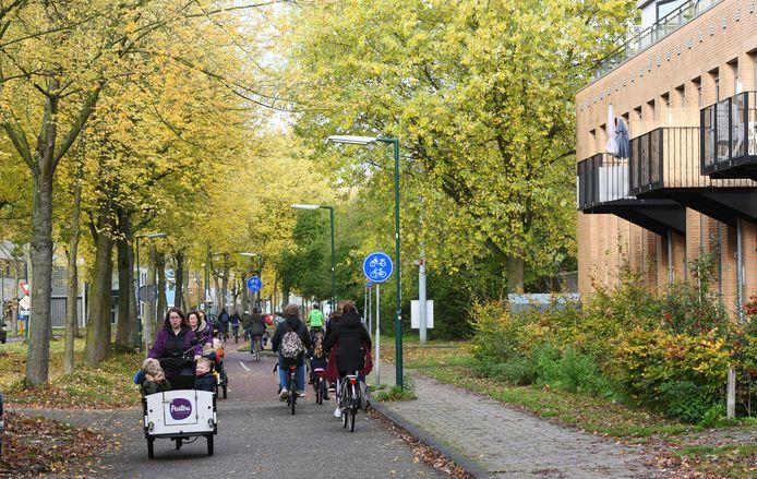 De Molenzoom in Houten, dicht tegen het centrum aan. Hier overweegt de gemeente flink te verdichten en enkele woontorens te bouwen.