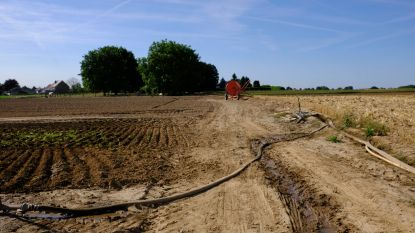 Ondanks aanhoudende droogte geen watertekort in Wallonië
