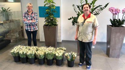 Tuliflor en de stad danken zorgverleners met een bloemetje, 390 boeketjes op verschillende locaties