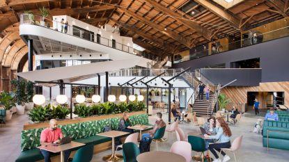 Hier wil je wel werken: hangar van 229 meter is nieuw kantoor van Google