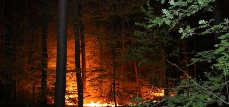 Opnieuw een natuurbrand: groot stuk grond in brand in Arnhem