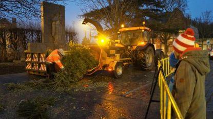 """""""Het Hoede Mullem"""" verbrandt geen kerstbomen, maar verhakselt ze"""