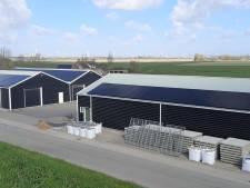 226 zonnepanelen in gebruik genomen in Borssele
