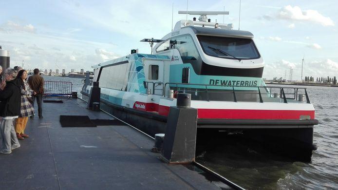 De waterbus in Antwerpen wordt door het bedrijf gerund dat door de gemeente Zeewolde is gevraagd of het wil meedoen in de watertaxi tussen Harderwijk en Zeewolde.