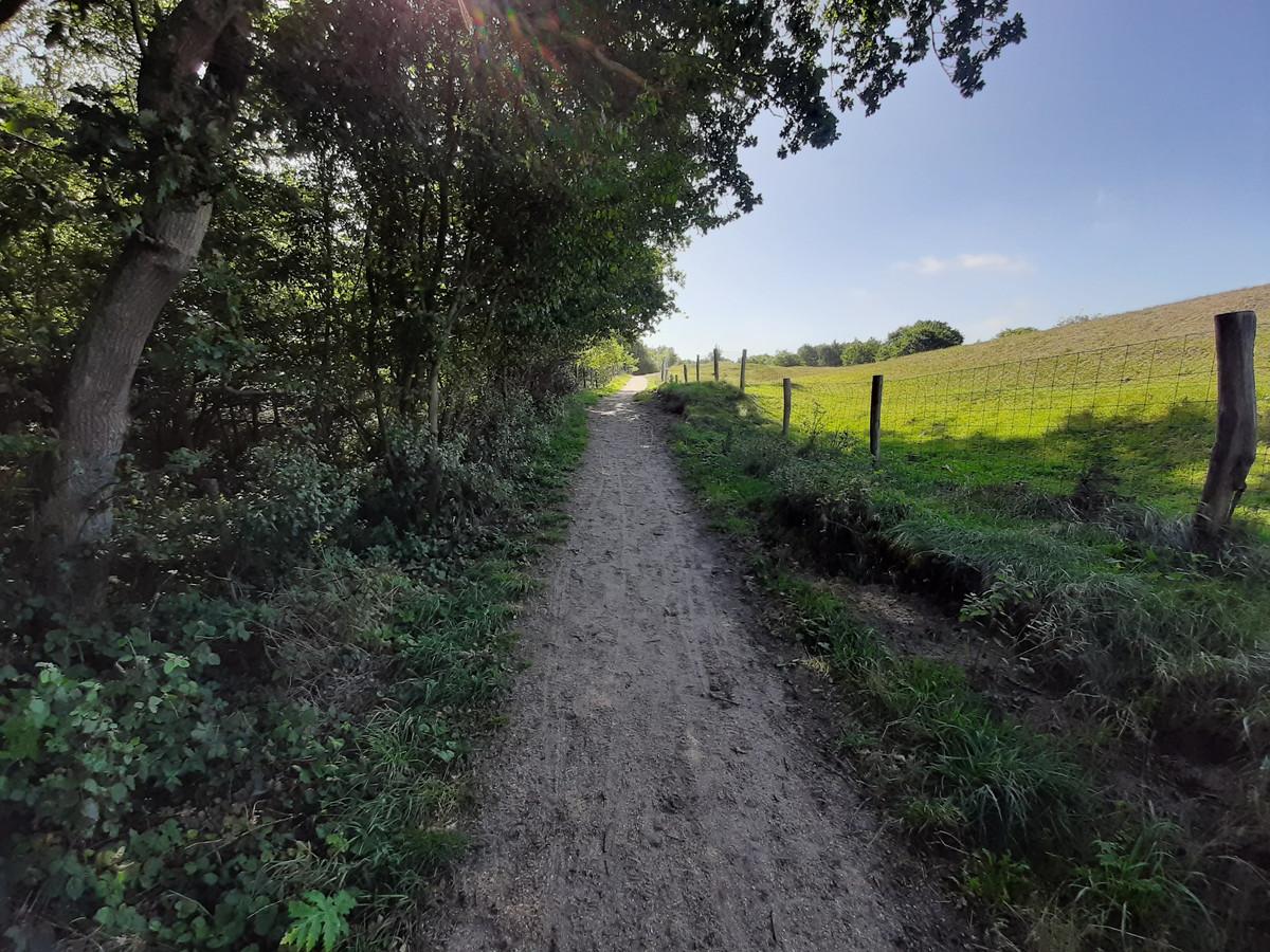 Het huidige wandelpad tussen de Moolweg en Adriaan van de Weijdeweg.