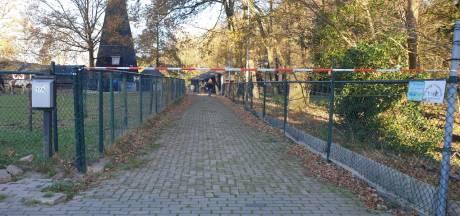 Dood paard in Hengelo gestorven aan natuurlijke dood