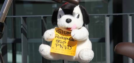 Knuffels in Rijssen tegen 'Pedopartij'