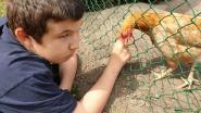 """Ouders zwaar autistische Cis (14) zoeken betere opvang: """"Zoon wordt urenlang opgesloten in kamer, door gebrek aan begeleiders"""""""