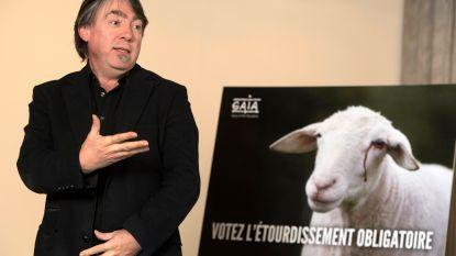 77 procent van stemgerechtigde Brusselaars wil verbod op onverdoofd slachten