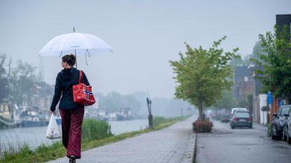 Tags en fietsstraten geven meer ruimte aan voetgangers en fietsers