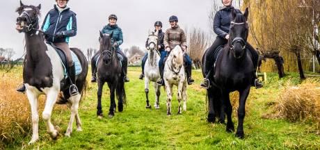 'Paardenhoofdstad' is grenzeloos ambitieus